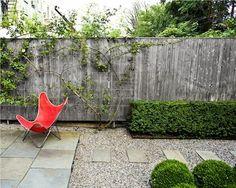 A Carroll Gardens garden designed by Susan Welti of Foras Studio for Carin Goldberg and Jim Biber of Pentagram