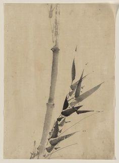 Katsushika, Hokusai, 1760-1849. Bamboo
