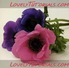 Anemone flower tutorial