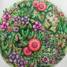 "231 Likes, 10 Comments - Silvia (@silviareginacassol) on Instagram: ""#magicaljunglecoloringbook #magicaljungle #selvamagica #selvamagicaoficial #wonderfulcoloring…"""