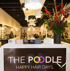 With blow dry bars the latest craze to hit Melbourne, The Poodle Blow Dry Bar offers quick, professional styling to women who are short on time, but want to look stylish. Blow Dry Bar, Dry Bars, Hair Day, Poodle, Melbourne, Ceiling Lights, Table Decorations, Stylish, Women