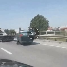visit our website for complete videos. Gifs funny gifs Home Decor jokes quotes text memes hilarious Funny Blogs, Best Funny Videos, Funny Short Videos, Funny Animal Videos, Funny Animals, Funny Laugh, Hilarious, Funny Facts, Funny Gifs