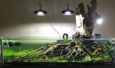 Get prettier light fixtures above, grow orchids on the stump....