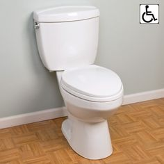 Alston Siphonic Two-Piece Elongated Toilet - ADA Compliant - Toilets and Bidets - Bathroom