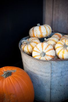 Pumpkins and galvanized metal... great combo