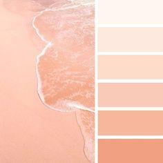 Beach inspired color palette #colrpalette #peach