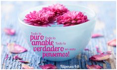La Biblia: Filipenses 4:8