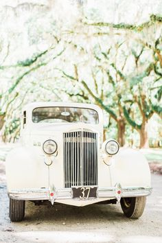 Vintage Packard. Vintage car from Timeless Motorcoaches, image by Simply Sarah Photography at Wormsloe Historic Site in Savannah, GA. #wedding