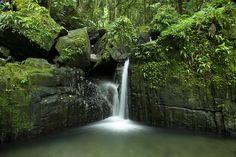 Riachuelo La Coca by e_romero · Waterfall, El Yunque Forest, Puerto Rico