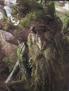 The Lord of the Rings: The Two Towers (2002) Treebeard: [after seeing the torn-down forest around Isengard] Saruman! Description from pinterest.com. I searched for this on bing.com/images