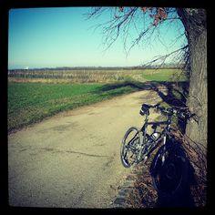 Dieter's Radtouren: 15.12.13 - Seibersdorf Mountain Biking, Bicycle, Bike Rides, Bike, Bicycle Kick, Bicycles