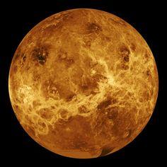 A radar view of Venus taken by the Magellan spacecraft, with some gaps filled in by the Pioneer Venus orbiter. Credit: NASA/JPL