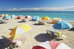 A stylish beachfront hotel on iconic Collins Avenue, with easy access to both Miami and South Beach Miami Beach Hotels, Beach Hacks, Hotel Packages, Hotel Branding, South Beach, Hotel Offers, Strand, Perfume, Ocean