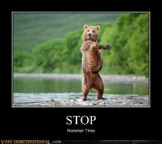 Funny pictures about Sexy bear. Oh, and cool pics about Sexy bear. Also, Sexy bear photos. Photo Ours, Photo Humour, Animal Pictures, Funny Pictures, Funniest Pictures, Pictures Of Bears, Funny Pics, Funniest Quotes, Funny Stuff