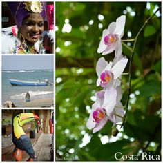Blog Graffiti: Conozca Costa Rica! Postal!