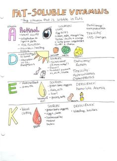 Fat and water-soluble vitamins essay