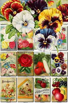 SEEDS-30 Catalogs Covers Collection with 95 vintage images Rose flowers collage in High resolution old digital download printable vegetables           data-share-from=listing        >           <span class=etsy-icon