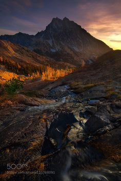 The Golden Path by TrevorAnderson. Please Like http://fb.me/go4photos and Follow @go4fotos Thank You. :-)