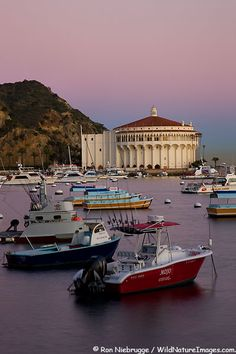 Harbor and the Catalina Casino Ballroom, Avalon, Catalina Island, California/ Another place I have seen. via boat west of CA Avalon Catalina Island, Catalina Island California, Santa Catalina Island, California Dreamin', Avalon California, California Honeymoon, Oh The Places You'll Go, Great Places, Places To Travel