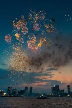 2015 Yokohama Fireworks by Shinichiro Saka Via Flickr: 横浜港 船上撮影 2015:08:04 19:14:36