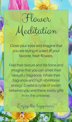 Here's a fun, simple meditation you can do to raise your vibration. Fresh flowers have a naturally high frequency. Their beautiful presence and fragrance can be truly therapeutic and cleansing. For this meditation, you don't even need real flowers. Meditation Mantra, Walking Meditation, Easy Meditation, Meditation Benefits, Meditation For Beginners, Meditation Techniques, Mindfulness Meditation, Guided Meditation, Meditation Meaning