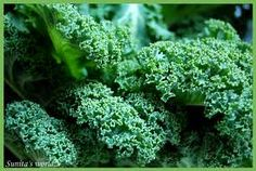 Why You Should Consider Kale