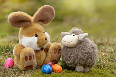 Free photo: Easter, Easter Bunny, Easter Eggs - Free Image on ...