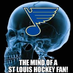 Looks pretty accurate! St Louis Hockey, Nhl Winter Classic, St Louis Blues, Go Blue, St Louis Cardinals, The St, A Team, How To Look Pretty, Missouri