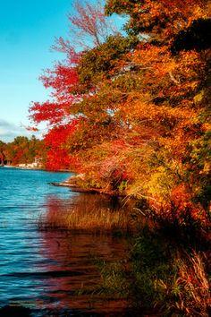 """Seeing Red"" Chebago Lake Essex, Massachusetts www.coast2coastimages.com"