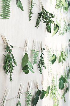 19 nya sätt att plantera dina gröna växter