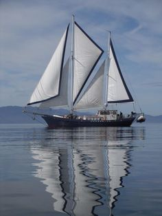 Lungta...57' Benford ketch with a wishbone sail plan.  Sailed from Portland, OR to Long Beach, CA 10/12.  Vessel is currently in Mexico at the beginning of an around-the-world cruise by the owners.