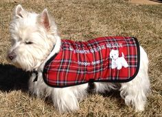 Bear is now known as Trooper Bear wearing his new embroidered coat from the Worldwide Westie Rescue. $ from these coats help rescue westies. Bear knows.....he was a rescue and is ours forever. 2-2014