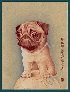 Vines of funny pets. Pugs are fantastic. Vines of funny dogs. Pugs are amazing. Raza Pug, Amor Pug, Animals And Pets, Cute Animals, Pug Illustration, Pug Mug, Cute Pugs, Funny Pugs, Pugs And Kisses