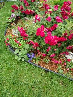Corner flower beds birdbath in flower bed my dream for Corner flower bed ideas