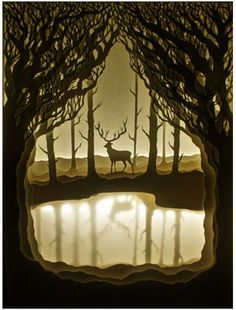Incredible paper cut art incorporating LED back-lit light boxes by artist couple…