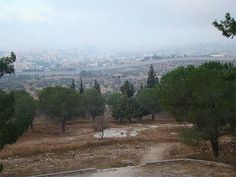 Poemas del río Wang: Tantour: (Caption reads) A view of Bethlehem from the Tantur Institute,and on the world from the Palestinian side of the Tantur  Checkpoint