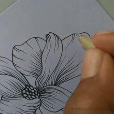 Line Art Flowers, Flower Art, Pencil Drawings, Art Drawings, Botanical Line Drawing, Trending Art, Flower Sketches, Acrylic Painting Techniques, Color Pencil Art