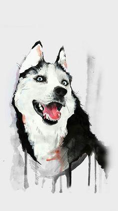 #husky #dog #only #husky 🐺🐺