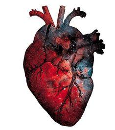 Blood, iron/steel/diamond Best Picture For Medical scrubs Fo Human Heart Drawing, Anatomical Heart Drawing, Art Sketches, Art Drawings, Medical Wallpaper, Herz Tattoo, Brain Art, Anatomy Art, Heart Anatomy Drawing