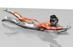 Біомеханіка вправ