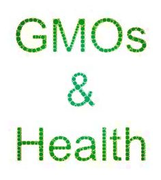This links to a Digital Journal article that contains links to a number of studies and articles about GMOs and health, including an Italian study that showed immune system reactions in mice fed GMO corn.