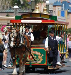 Main Street Trolley - Magic Kingdom   More for horse lovers at Disney World at http://www.buildabettermousetrip.com/disney-horses   #DisneyWorld #Disney