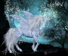 I want a fluffy unicorn, with a sparkly horn, rainbow fur, and magical hooves. is that too much to ask for! <3 Cherokee Billie Spiritual Advisor
