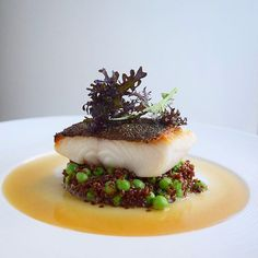 [black cod] by ・・・ Bacon dashi poached crispy skin black cod on pork stock braised red quinoa with sweet baby peas If you also want to get featured and get the opportunity to share your story about your meal at berlinerspeisemeisterei just tag your Seafood Recipes, Gourmet Recipes, Cooking Recipes, Gourmet Desserts, Gourmet Foods, Gourmet Food Plating, Cooking Pasta, Sushi Recipes, Cooking Tips