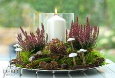 DIY: hübsches Herbstgesteck mit Heidekraut DIY: pretty autumn arrangement with heather Fall Flowers, Diy Flowers, Flower Pots, Fall Planters, Container Gardening Vegetables, Container Flowers, Arte Floral, Autumn Garden, Fall Diy