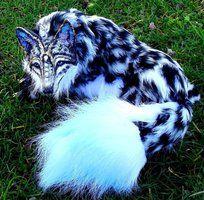 -SOLD-Posable Snow Leopard Wolf by Wood-Splitter-Lee