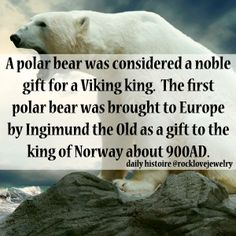 A Viking Polar Bear...