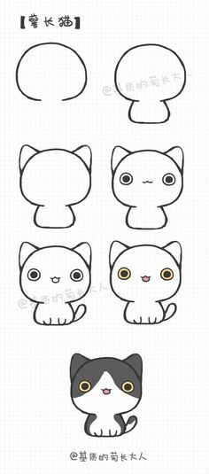 Cat dibujo cute!