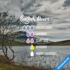English Moors - Essential Oil Diffuser Blend
