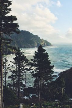 the oregon coast is one of my fave places on the planet